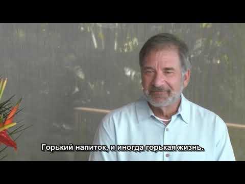 """ʘ  Адамус. Серия """"Страсть 2020"""" Шоуд 8"""