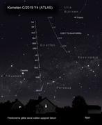 Kometen ATLAS Y4