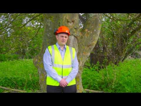 Tree Surveying Tutorial