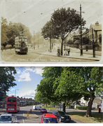 Bounds Green Road 1905