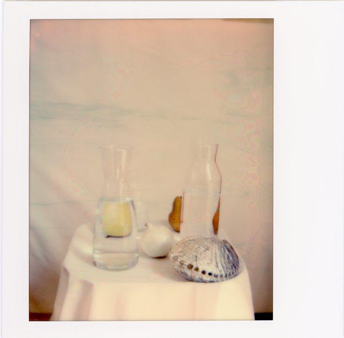 PolaroidQuarantine0046