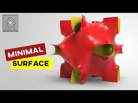 Minimal Surface