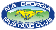 The 47th Annual Shelby Mustang & Ford Meet - Hiawassee, GA