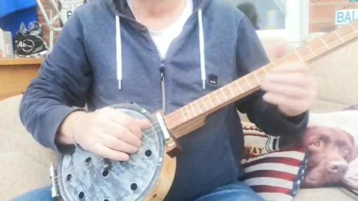 ResoBanjAr sound test by Greg Henshaw