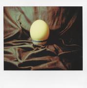 La perfezione dell'uovo