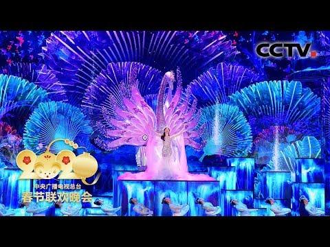 [2020央视春晚] 舞蹈《泉》 领舞:宋洁 表演:张天爱(完整版)| CCTV春晚