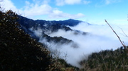 Sea of Swirling Fog