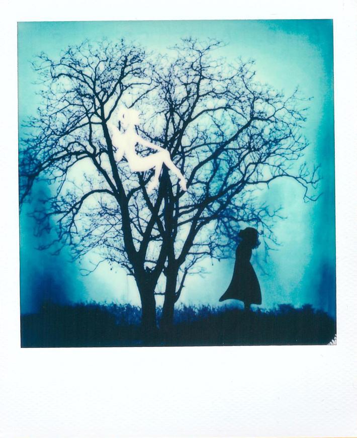 Fairy in the dark