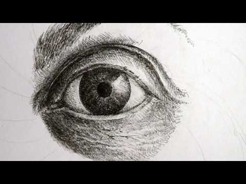 Drawing Time Lapse