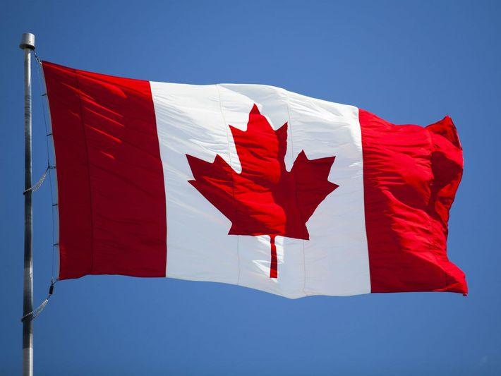 Canada Land Surveyors / Geomatics