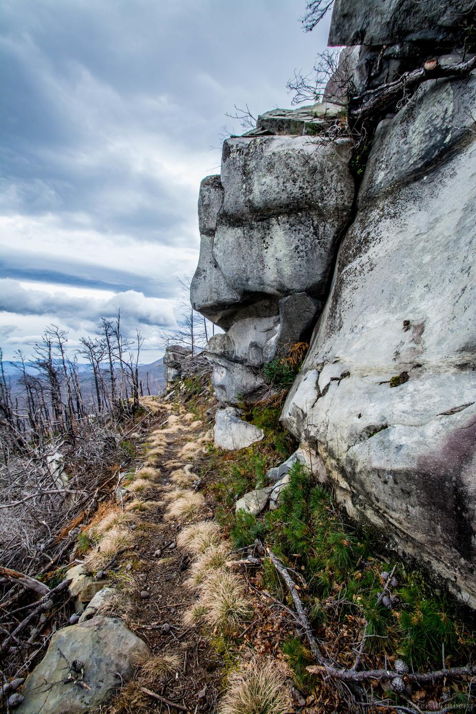 Bullhead Trail, December 27 2018