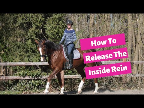 How To Correctly Release The Inside Rein In Dressage