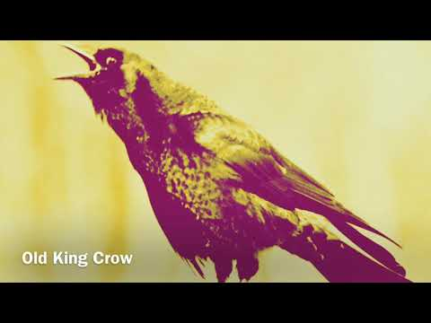 Old King Crow