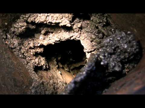 Why you need to CLEAN YOUR CHIMNEY!