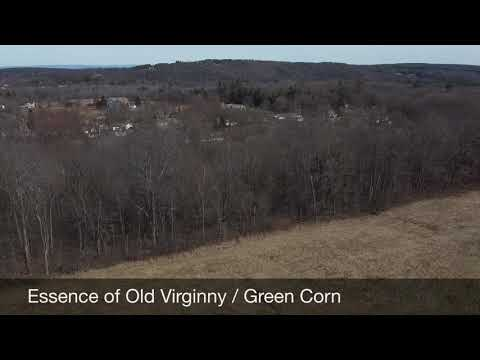 Essence of old Virginny / Green Corn