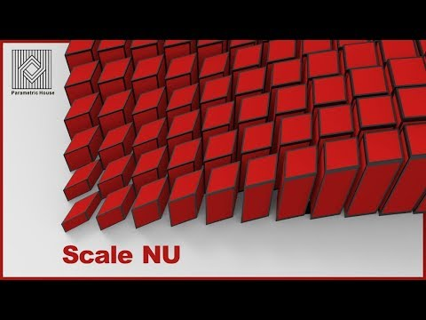 Grasshopper Tutorial (Scale Nu)