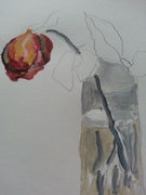 Drawing of Rose petals 005