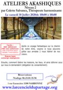 Ateliers akashiques niveau 2 par Colette Salvanez