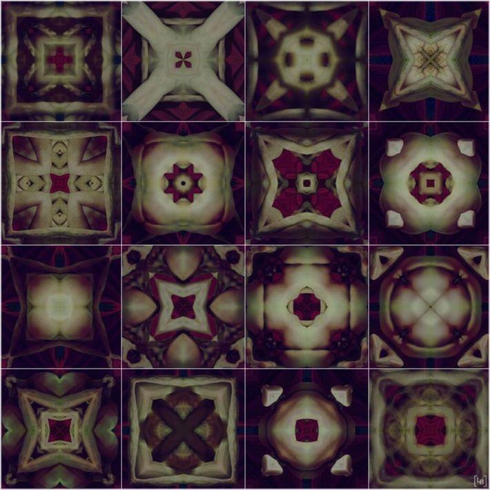 multiple anatomical kaleidoscopic