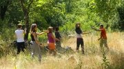 Stage Qi gong et nature | Ardèche