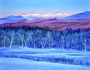 Alpenglow and Bare Trees
