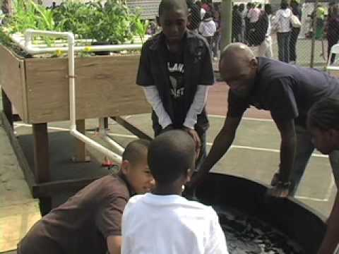 kijiji grows, urban garden systems (aquaponics)... keba konte & eric maundu