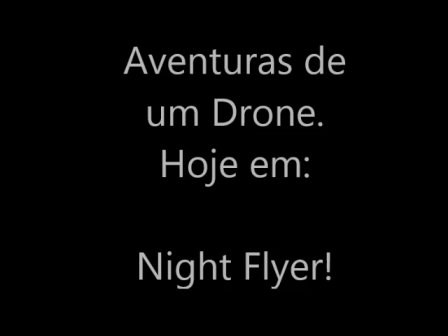 night_flyer