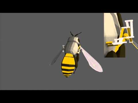 Bee - Hovering cycle - The universal mechanical linkage system of the voluntary movement