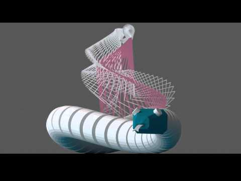 Snake -  Serpentine motion cycle - The universal mechanical linkage system of the voluntary movement
