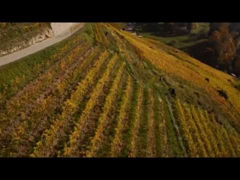 Automn colors - Altidrone.ch - Switzerland