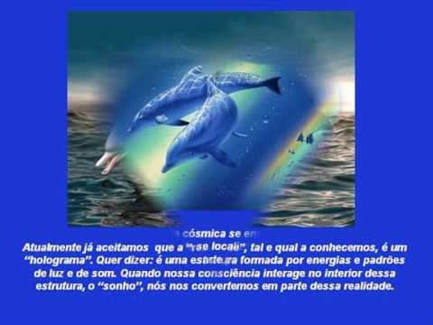 Mensagens dos golfinhos