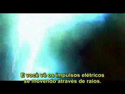 (HD) - Quem Somos Nós ? parte 06 / 12