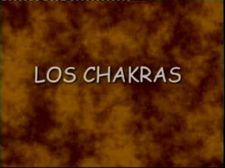 8 Los Chakras