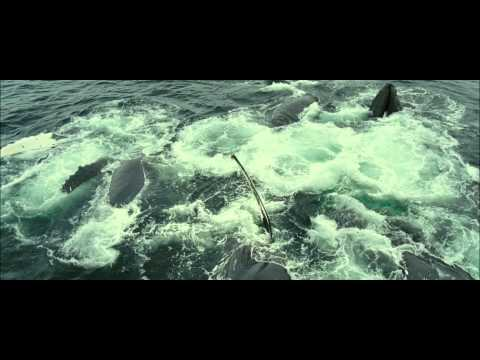 French Documentary - Oceans III - 1080p Eng Subs.avi