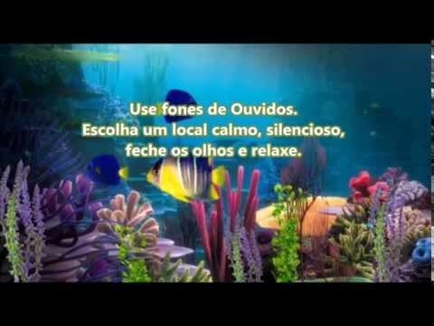 02 - Regressão de Vidas Passadas - Brian Weiss - Meditação 02