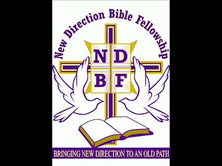 NDBF's PROMO CLIP 4