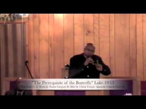 The Prerequisite of the Butterfly Part3