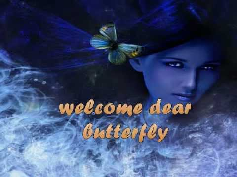 pure in silence with butterfly's in your heart