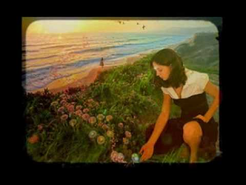 The Meadow movie.mpg