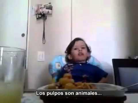 IMPRESIONANTE - Un niño explica por qué no quiere comer animales