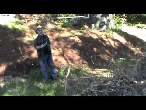 composting part 2-Paul Taylor