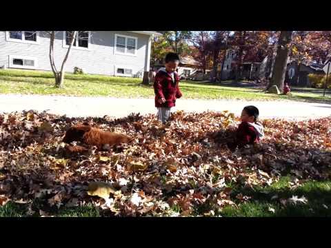 autumn play 102614