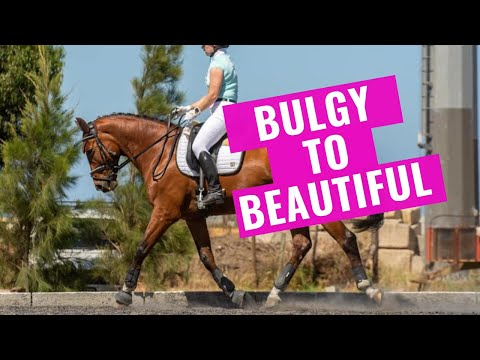 Taking The Trot From Bulgy To Beautiful In Dressage!