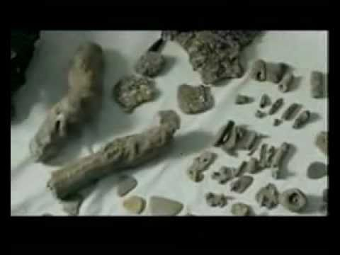 Dwarka, India - 12,000 Year Old City of Lord Krishna Found - *Full*