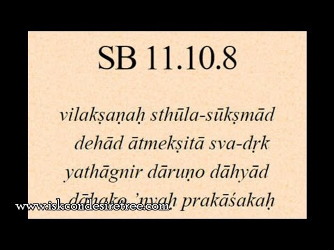 Bhagavatam Daily 166 - 11.10.08 - See beyond visible object to invisible active principle