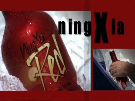 Soooo wirkt NingXia Red Gojji-Püreesaft!
