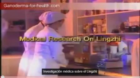 Gano Estudios Cientificos del Ganoderma Lucidum ( Reishi ) & Lingzhi