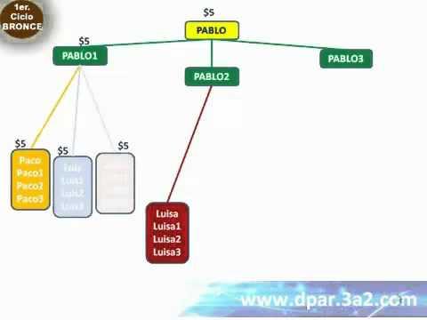 ¿Que es ser Team Leader en DPAR? -- www.dpar.3a2.com