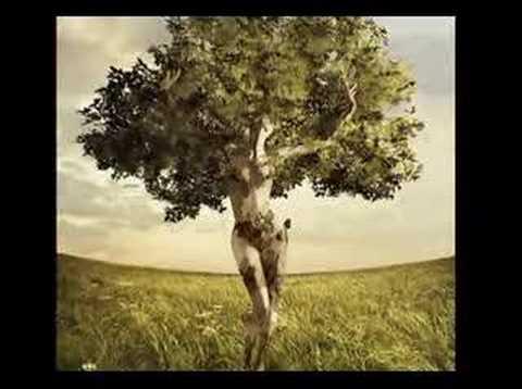 EDERA (Ricordi del cuore) - Amedeo Minghi