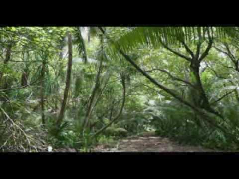 Olohega or Swains Island Part 2 of 3 Tagata Pasifika